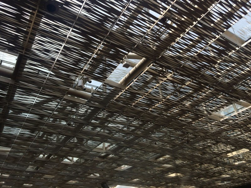 Canopy roof
