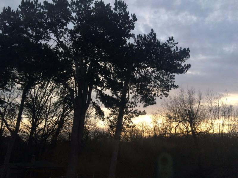 English winter morning