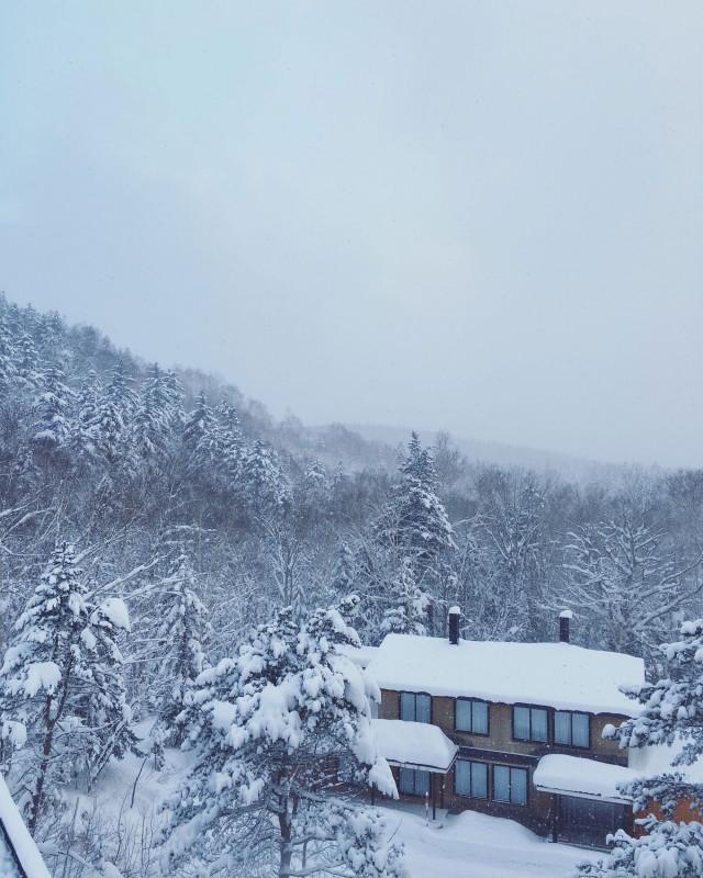 Snowy-Japan