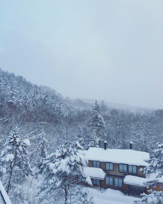 Snowy Japan 640x800